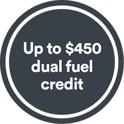 Up to $450 dual fuel business credit*
