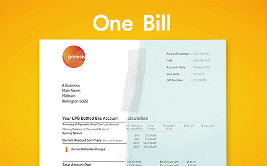 Electricity and gas on one bill​